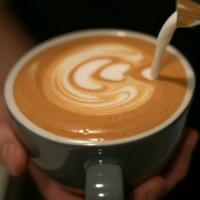 Latte Thumbnail